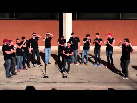 Mark Trapani'10 & Yale Whiffenpoofs Performance