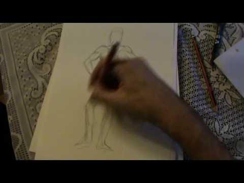 Anatomía del cuerpo humano. Parte trasera - YouTube