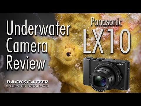 Panasonic LX10 - Underwater Camera Review