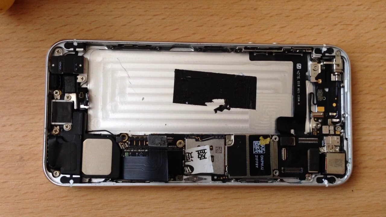 замена шлейфа айфон 5с