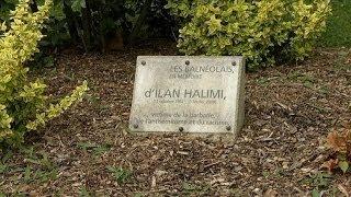 Mort d'Ilan Halimi: que sont devenus les 27 accusés? - 29/04 streaming