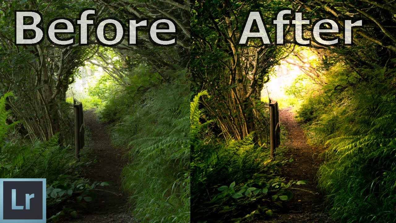 Nature / Forest Photography Editing in Lightroom - Lightroom cc 2018 on landscaping ideas, walkways and pathways ideas, diy painting ideas, path paving ideas, accessories ideas, diy walkway ideas, solar powered ideas, path garden ideas, rock painting ideas, solar light ideas, front walkway ideas, october wedding decoration ideas,