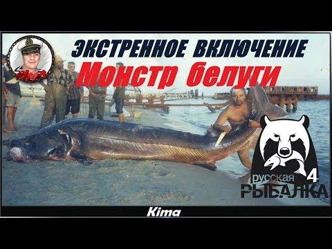 Русская рыбалка 4🔴 ЭКСТРЕННОЕ ВКЛЮЧЕНИЕ!!! - МЕГАЛАДОН! 🔴▶️ Kima STREAM 18+