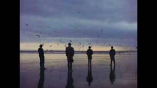 Video The Disease Echo & The Bunnymen