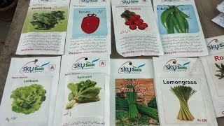 What Plants Grow in Winter | Seeds Shopping | Happy Gardening | September-2016 (Urdu/hindi)