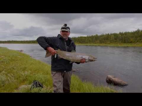 Fishing Salmon
