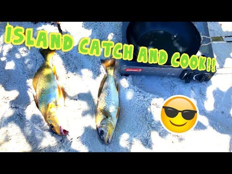 Island Style Catch And Cook | Fresh Fish Cooked On A Butane Grill