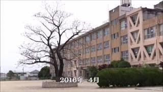 中村堂 動画ニュース 第15号