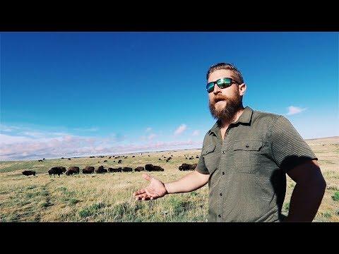 Hunting Buffalo @ the Allan Savory Institute