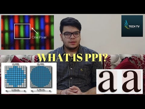 What is PPI? [Hindi]