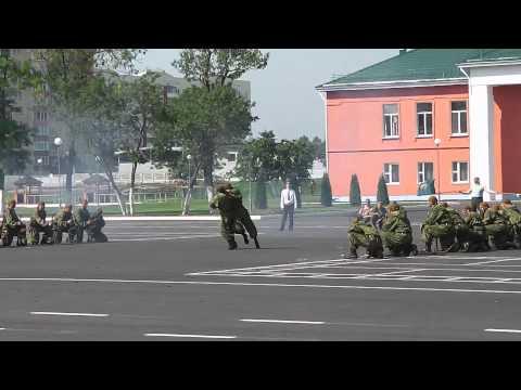 День ВДВ в Витебске. Показательные выступления десантников 103-й гв. отд. моб. бригады .