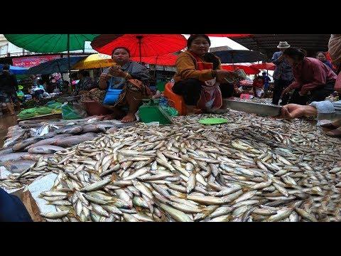 เลาะเที่ยวลาวใต้ EP14. ตลาดแลงเมืองปากเซ ปลาหมู ปลาแซ่บหากินยาก