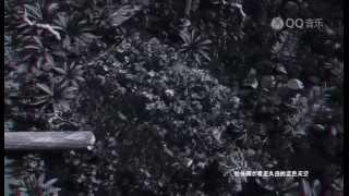 蘇醒-心世界(完整版MV)