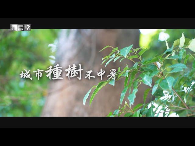 【民視異言堂】城市種樹不中暑