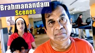 Brahmanandam All Time Hit Comedy Scenes || Non - Stop Back To Back Telugu Comedy Scenes