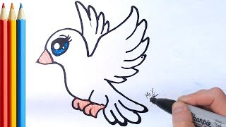 How to Draw Dove (Easy) - Step by Step Tutorial