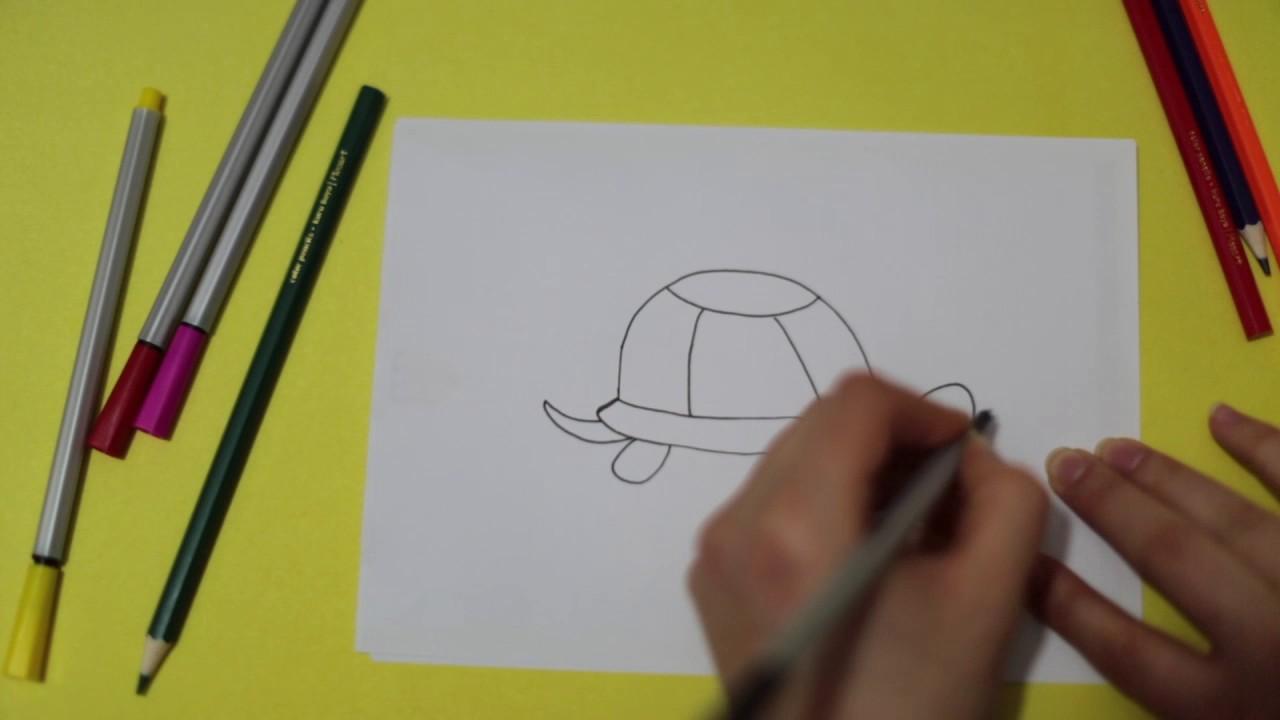 Kaplumbaga Cizimi Cocuklar Icin Boyama Draw Turtle Rhymes