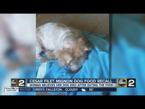 Pasadena Woman Says Recalled Cesar Dog Food Killed Her Dog