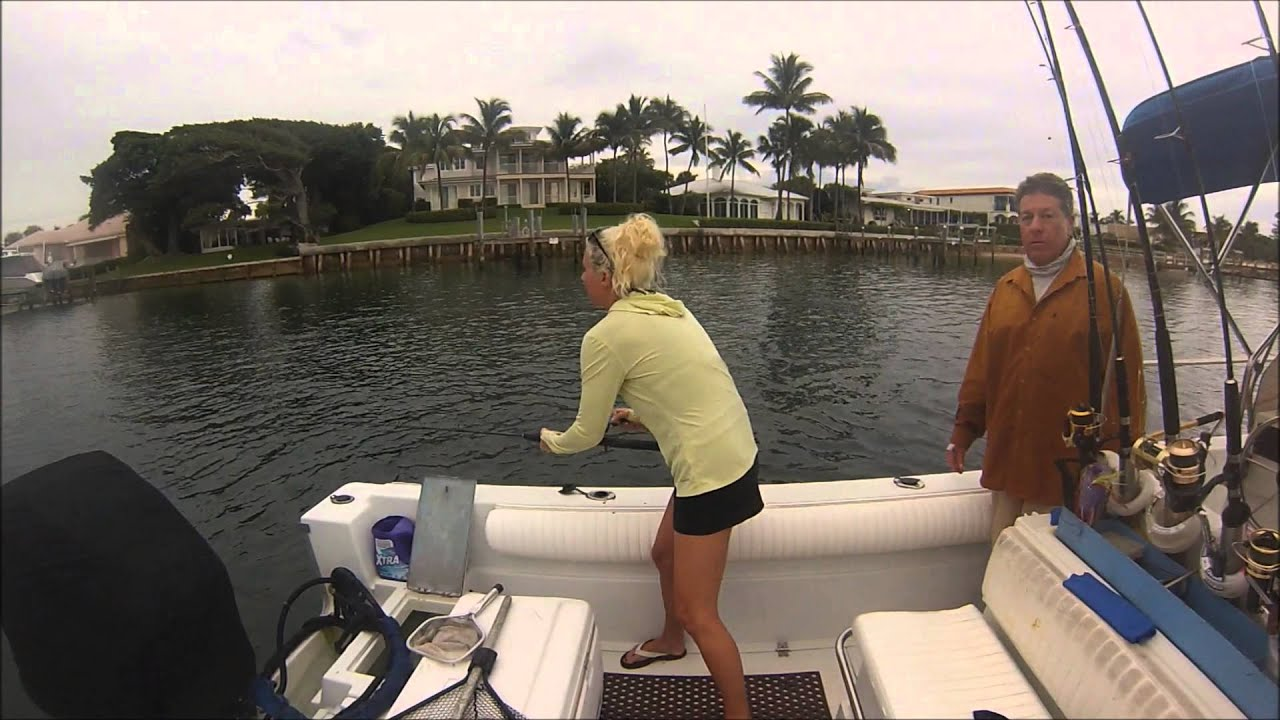 Jupiter fishing jupiter inlet snook youtube for Jupiter inlet fishing