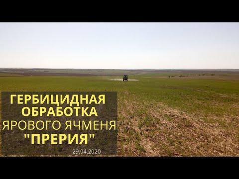 """Гербицидная и инсектицидная обработка ярового ячменя """"Прерия"""" 29.04.2020"""