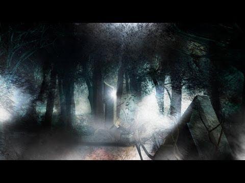 Folk/Viking metal compilation I
