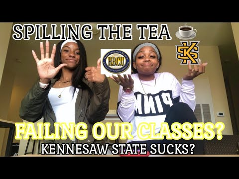 Pros And Cons Of Kennesaw State University🦉 #firstyearstudents