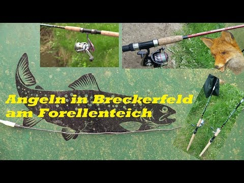 angeln-in-breckerfeld-*forellenzucht-steinbachtal*