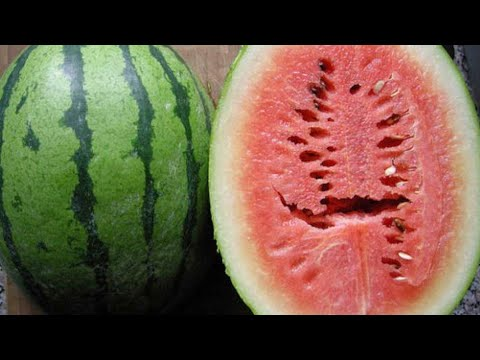 If You See This Split Inside Watermelon Throw it Away!