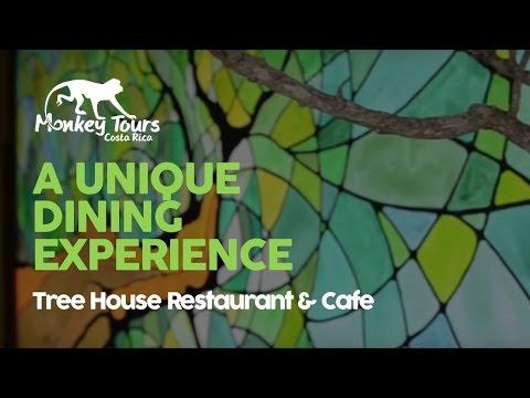 Tree House Restaurant Cafe In Monteverde