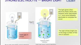 Lesson 26: Electrolytes and Nonelectrolytes