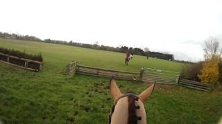Farmers Bloodhounds 01.12.13 Hedge Hopping Part 3
