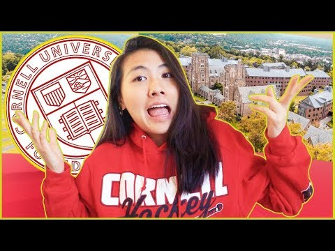🐻why I chose Cornell University (but should YOU apply?)