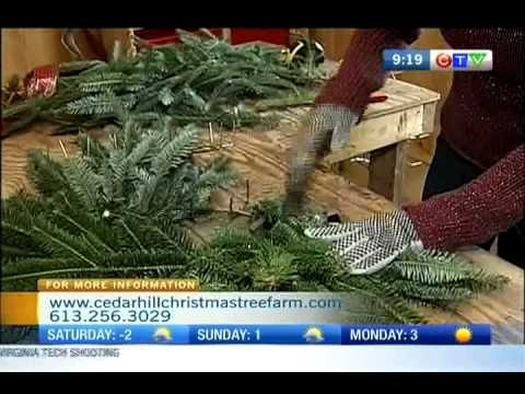 FROM THE GROUND UP: Mathews Christmas Tree Farm