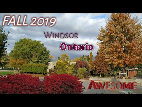 Fall 2019 || Vlog-10 || Awesum Weather & View || Windsor || Ontario || Canada ||