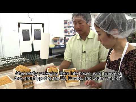 SoCalJapan 8月9日放送 Maruhide Marine Products, Inc.