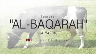 Al Baqarah (Saad El Ghamidi)