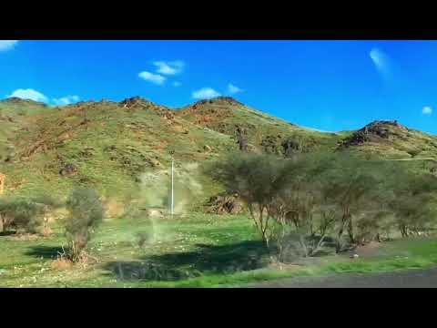 KSA Desert turn GREEN Al Musayjid