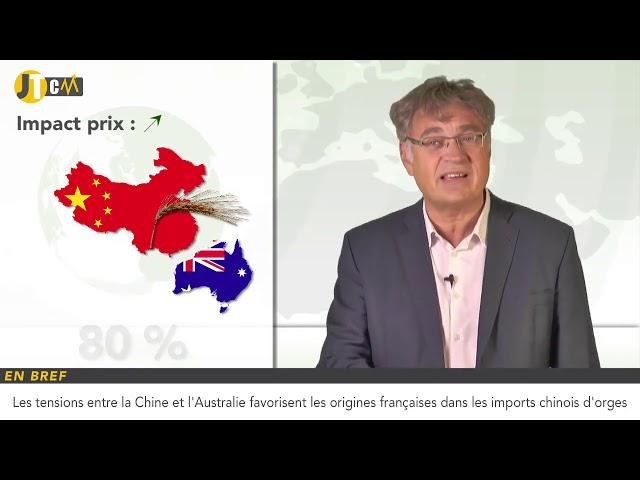 Révision à la hausse de la production de blé en Australie !