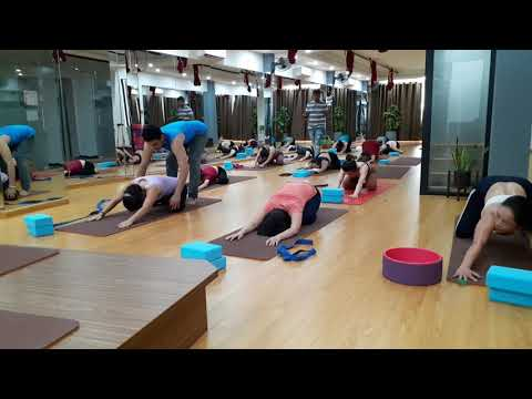 Day 1 ADVANCE TECHNIQUE FOR UPPER BACK AND SHOULDER|Master Praveen|PraveenYoga