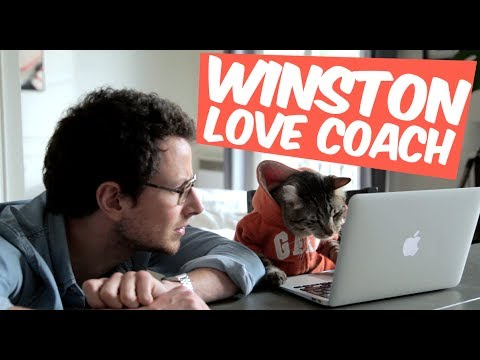 Winston love coach : la drague virtuelle