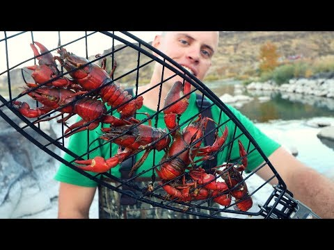 Roasting Big Crawfish Over an Open Fire - Catch n' Cook Crawdads and Bass!