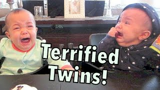 Terrified Twins! - October 04, 2014 - itsJudysLife Daily Vlog