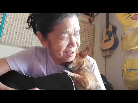 Love you more than i can say cover old lady