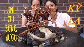 |TẬP 544| KỲ LẠ LINH CHI SỪNG HƯƠU HẦM GÀ NÒI NGON BỔ KHOẺ HẾT SẨY!YOUNGJI MUSHROOM  EATING SHOW