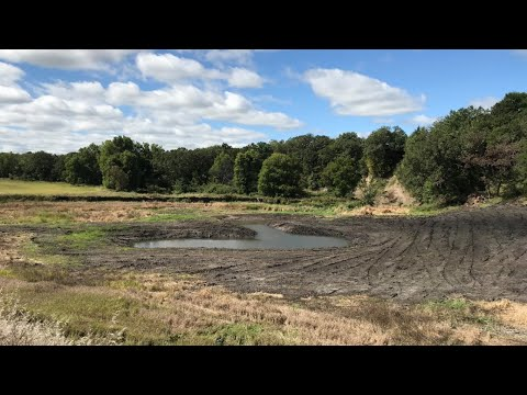 Restoring Rare Habitats For Wildlife And Water Quality – Oxbows - Virtual Field Day