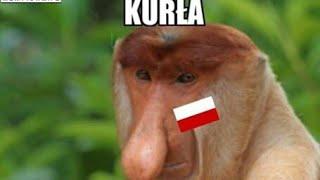 MEMY PO MECZU POLSKA - PORTUGALIA