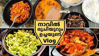തനി നാടൻ ഉച്ചയൂണ് ഇഷ്ടമാണോ? | Lunch Recipe Vlog | Paavakka thiyal, Chakkakkuru Masala, Fish Fry