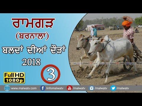 RAMGARH - ਰਾਮਗੜ੍ਹ  (Barnala) 🔴ਬਲਦਾਂ ਦੀਆ ਦੌੜਾ - Ox Races (FULL HD) 2018 - SHIFT 3