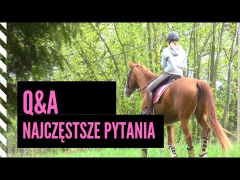 15 pytań do Jagody Dąbrowskiej / Kontuzje, ulubione konie, JD Attack