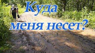 Поход в лес/ Иван чай/ Грибы/Купаемся в Каме